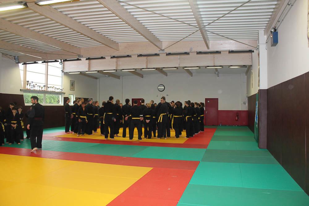 GRT-TSVD-2010-50