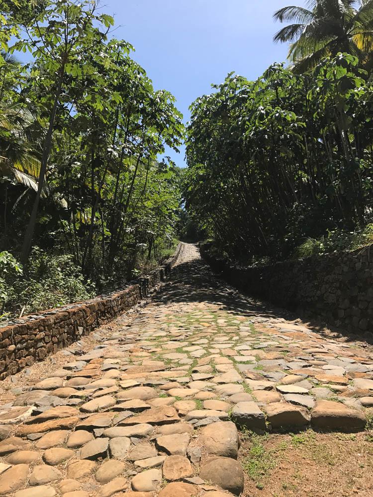Guyane-2016-232