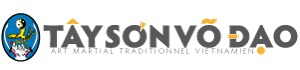 Tay Son Vo Dao Mobile Retina Logo