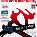 Démonstration Nuit des arts martiaux de Bourges